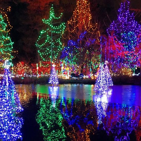 Must See Christmas Events