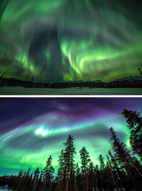 northern-lights-graphic1